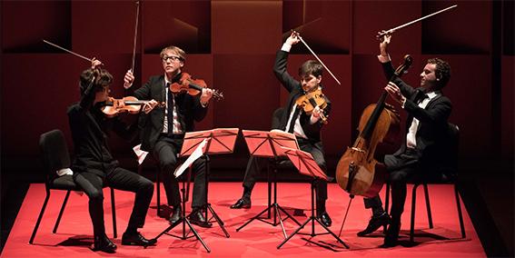 Quatuor Van Kuijk  De l'ombre à la lumière